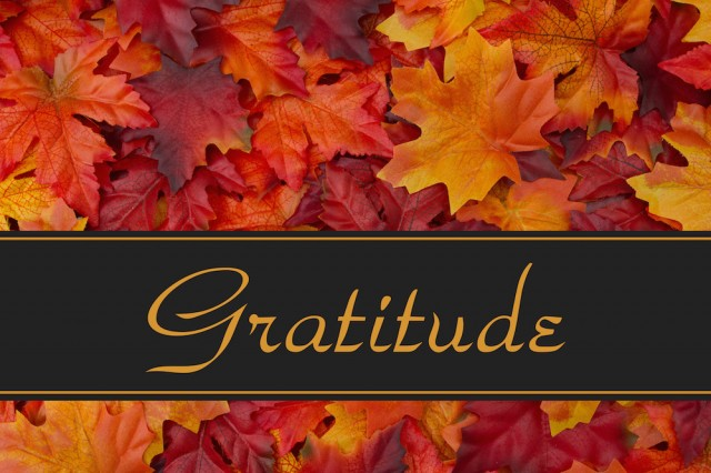 AdobeStock_Thanksgiving2017