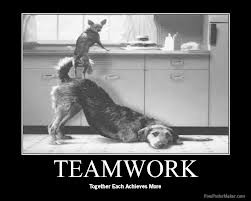 Teamwork with your Suppliers