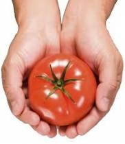 Tomato, Tomato… Analysis, Analytics?