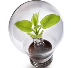 Blog Pick of the Week: The Energy of Green Purchasing